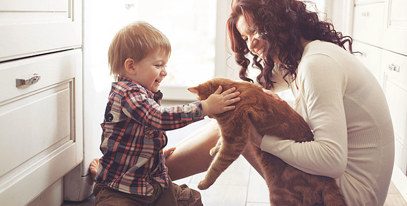 The benefits of adopting an animal
