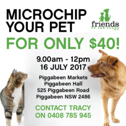 Microchip your pet for only $40!