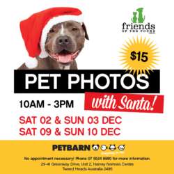 Pet photos with Santa!