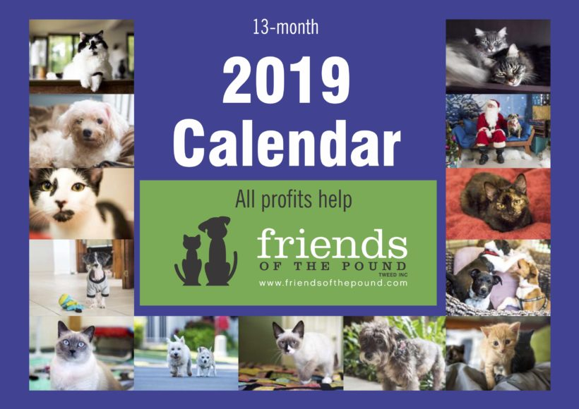 Our 2019 Calendar is now available!