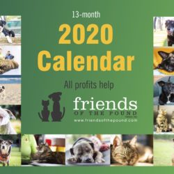 Our 2020 Calendar is now available!
