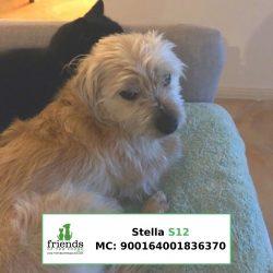 Stella (On Trial)